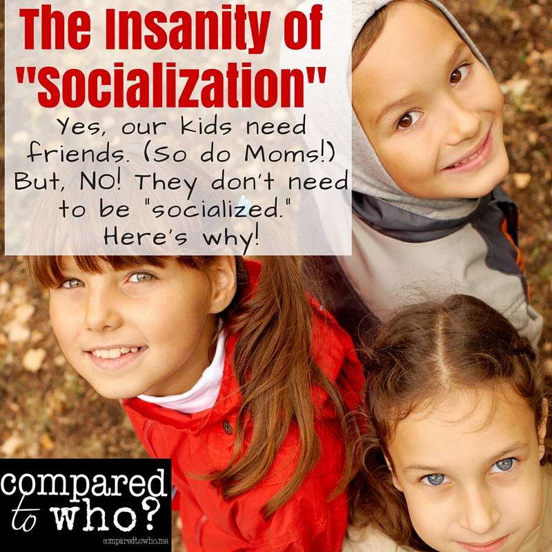 Insanity of socialization and homeschool