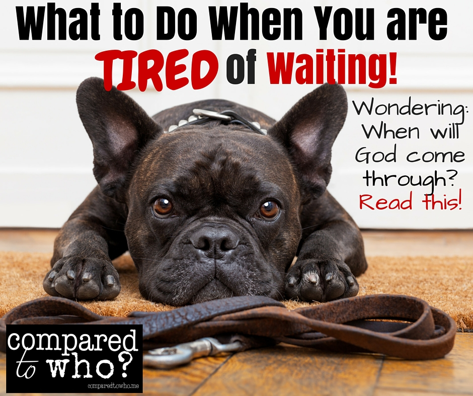 I'm Tired of Waiting: What to do while you are waiting on God!