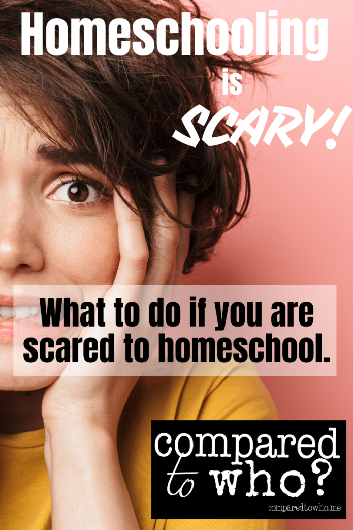 what to do if you are scared to homeschool